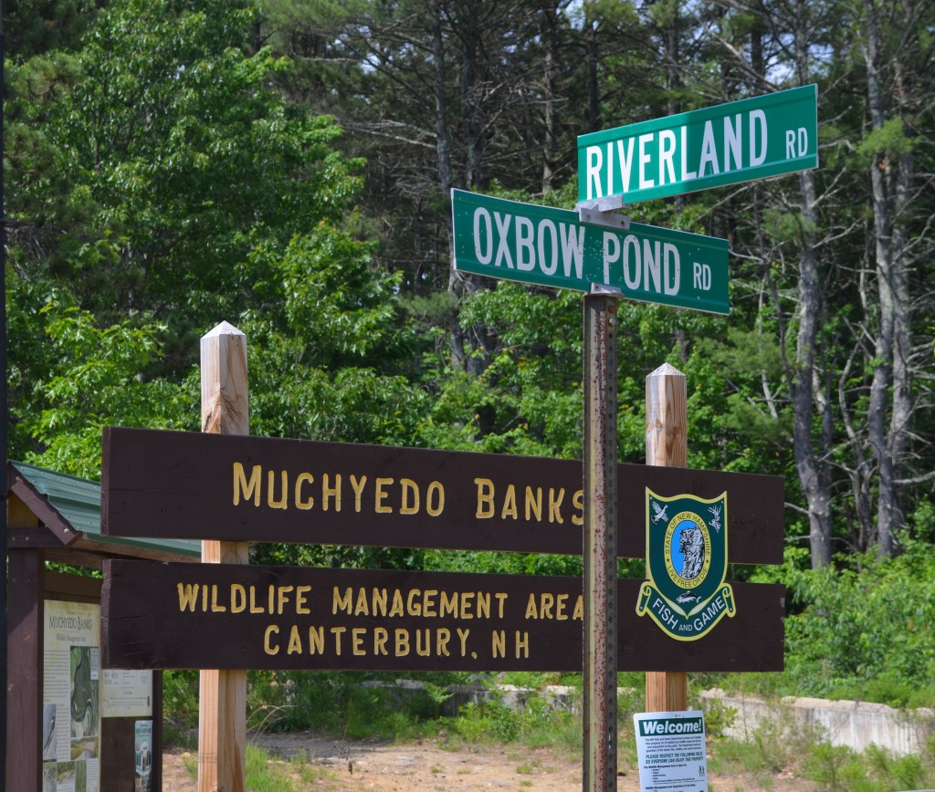 Muchyedo Banks sign